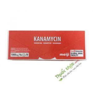 Thuốc Kháng Sinh Kanamycin Meiji-Hộp 10 Lọ-Trị Nhiễm Khuẩn