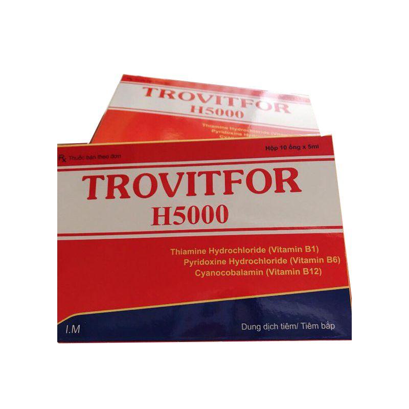 Thuốc Tiêm Trovitfor H5000 Hộp 10 Ống