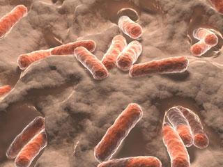 Biseptol - chống nhiễm trùng bởi vi khuẩn