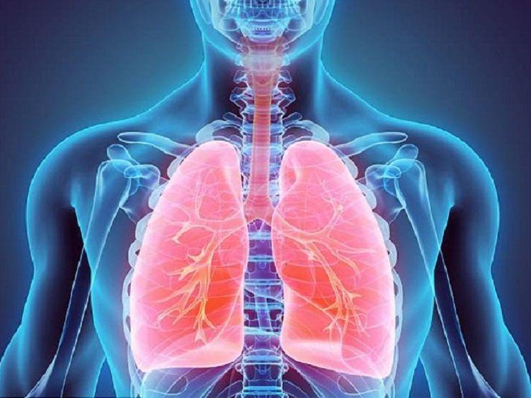 hô hấp