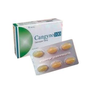 Cangyno 100 Hộp 6 Viên - Thuốc Đặt Trị Viêm Nhiễm Phụ Khoa