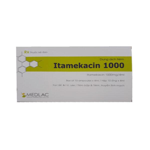 Dung Dịch Tiêm Itamekacin 1000 - Hộp 10 Ống - Thuốc Kháng Sinh